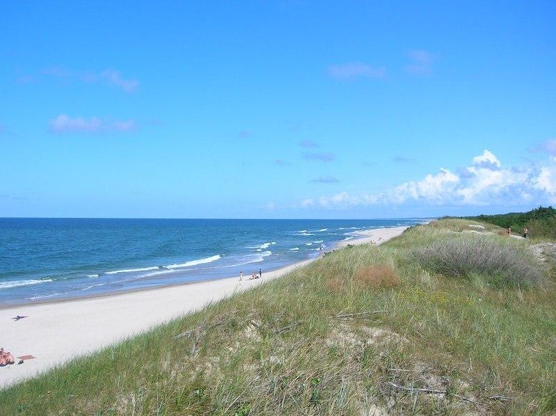 Сорокакилометровый пляж Куршской косы - 1