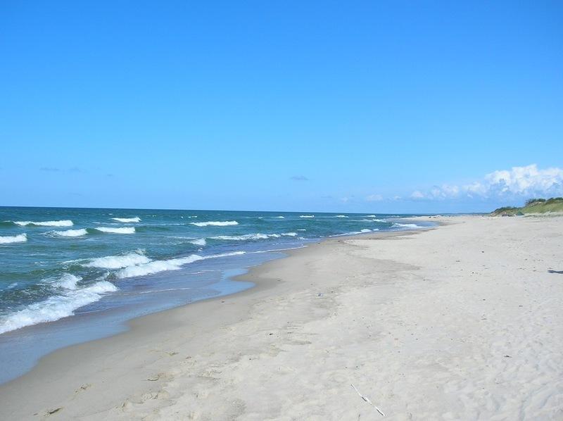 Сорокакилометровый пляж Куршской косы - 2
